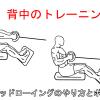 シーテッドローイングで広背筋を鍛える!正しいやり方と注意すべきポイント