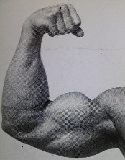 筋トレで腕を太くするためのオススメのメニュー9選