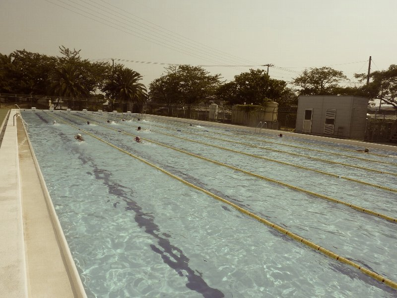 筋トレの代わりに筋肉を水泳で鍛えてることはできるのか
