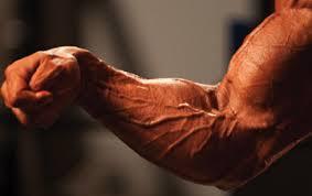 前腕を鍛えて格好いい腕を目指す