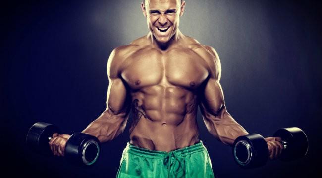 力こぶ(上腕二頭筋)の筋肉の仕組みとは