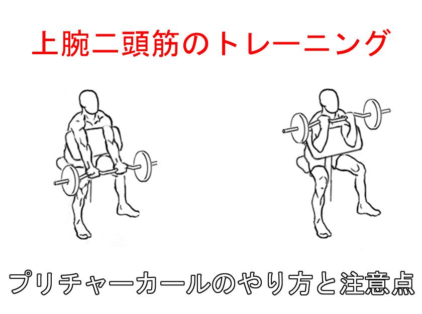 プリチャーカールで二頭筋を鍛える!正しいやり方と注意するポイント