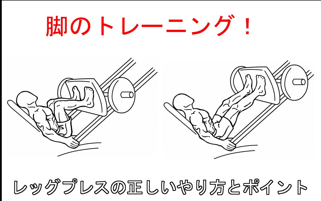 レッグプレスで脚を集中的に鍛える!正しいやり方と注意すべ5つのポイント