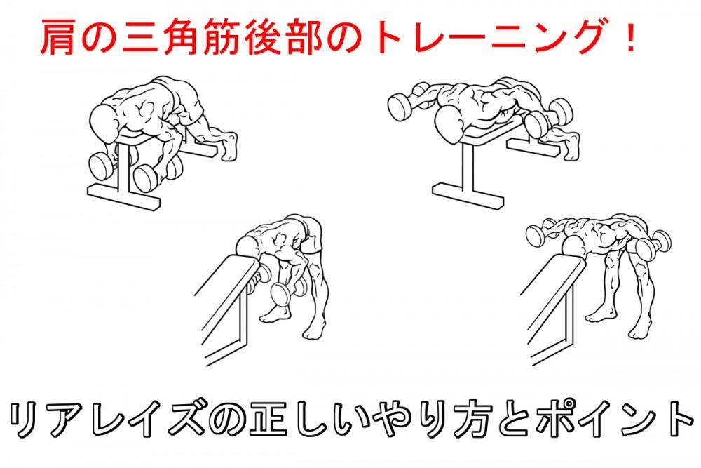 リアレイズで肩の三角筋後部を鍛える!正しいやり方と注意すべきポイント