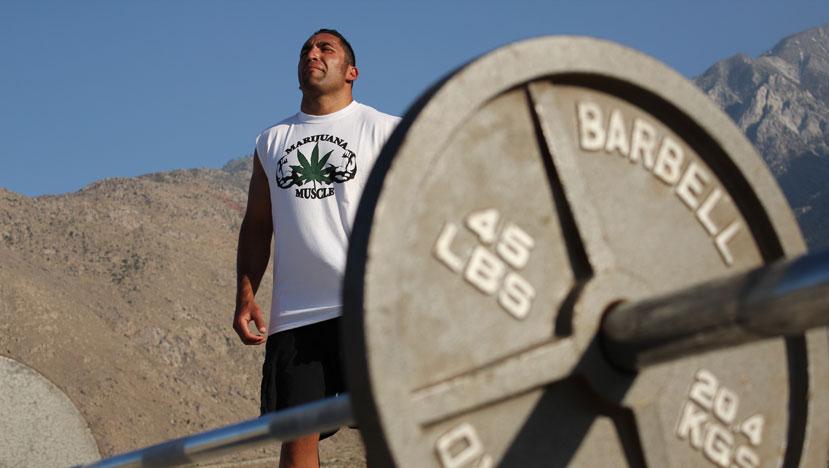 筋力や筋持久力やパワーなどを同時に鍛えるをホリスティック法とは