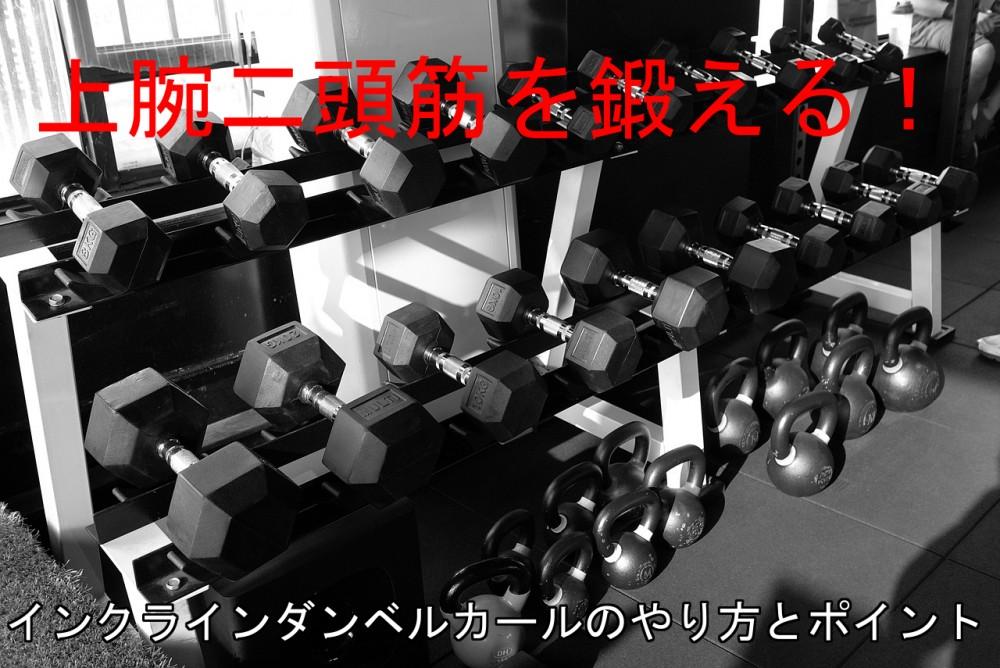 インクラインダンベルカールで上腕二頭筋を鍛える!やり方と注意すべきポイント
