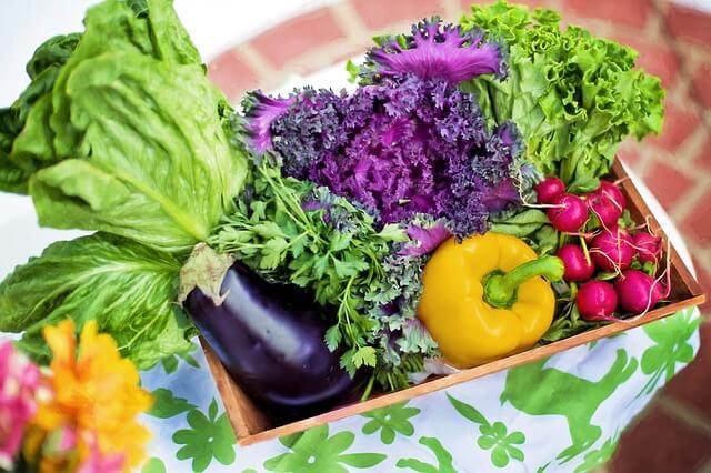 筋トレに野菜いらない?健康的な体を目指すなら摂取すべき理由