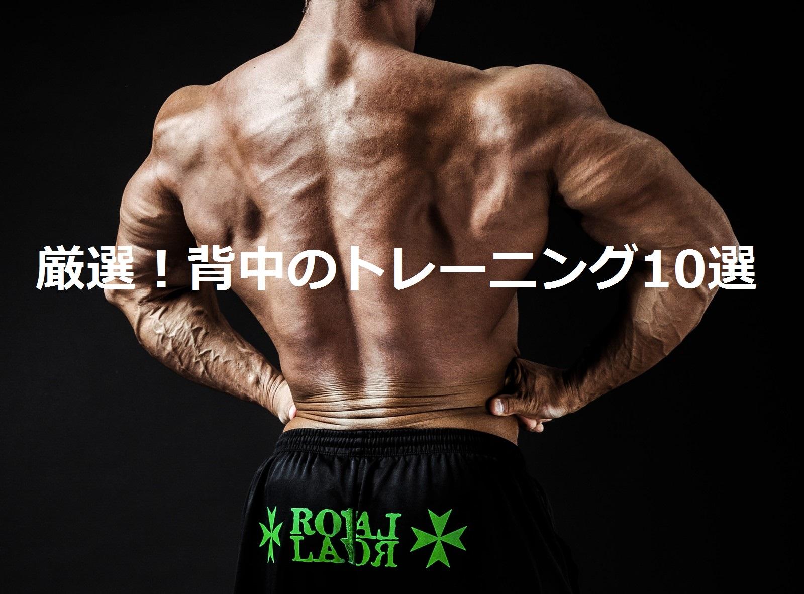 【厳選】背中のトレーニングまとめ。おすすめの筋トレ種目10選