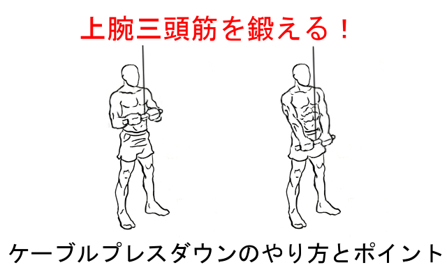 ケーブルプレスダウンで上腕三頭筋を鍛える!やり方と注意すべきポイント!