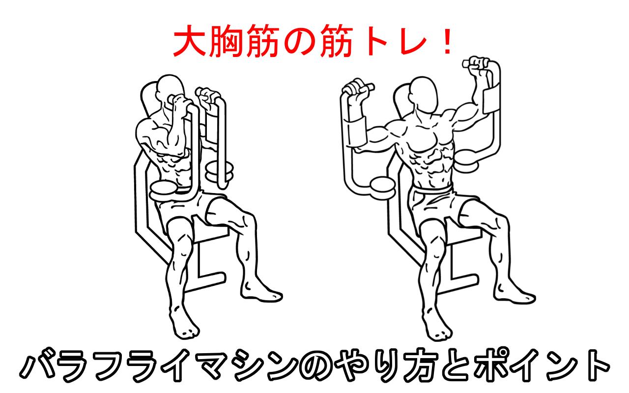 バタフライマシンの正しいやり方と注意点。大胸筋を鍛える筋トレ!