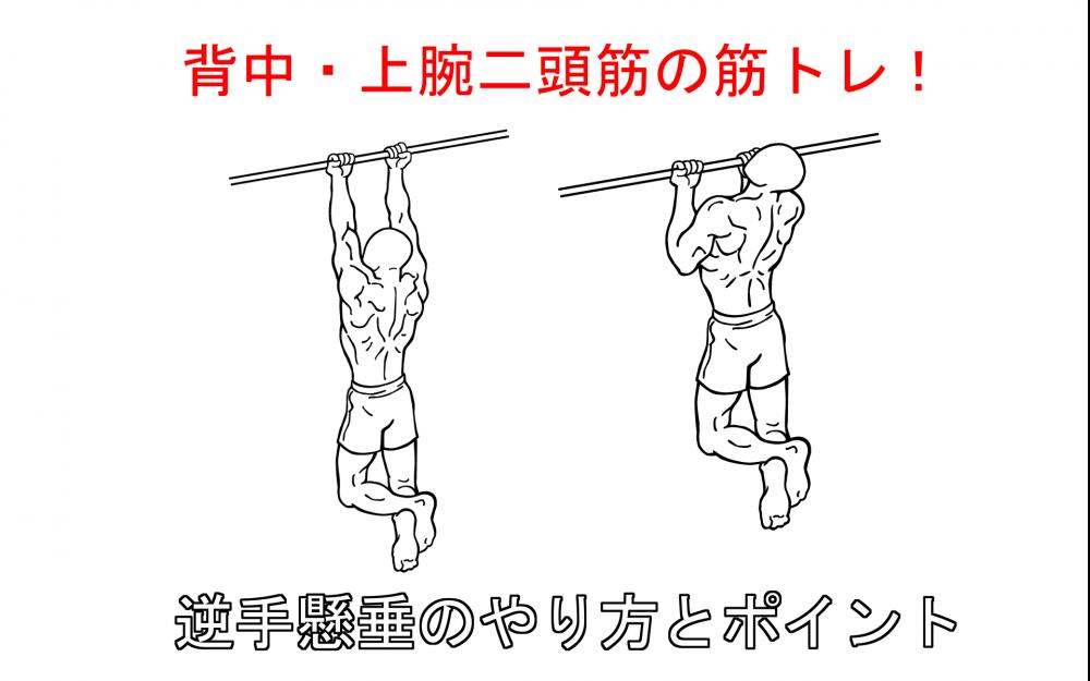 逆手懸垂(アンダーグリップチンアップ)の正しいやり方と注意点!